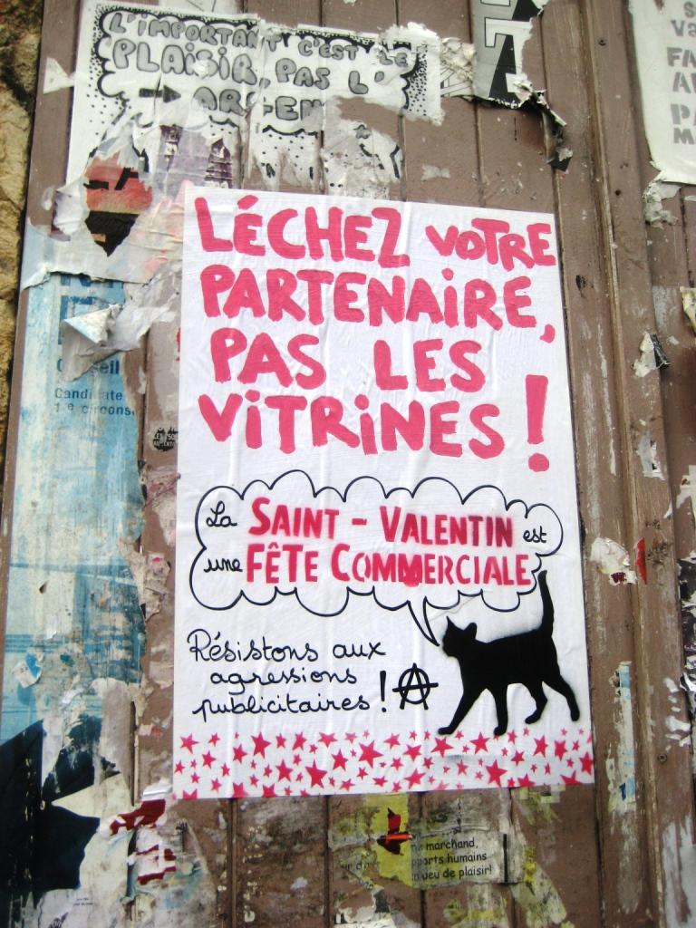 besancon-fevrier-2014-faites-lamour-pas-les-magasins_lechez-votre-partenaire-pas-les-vitrines-4